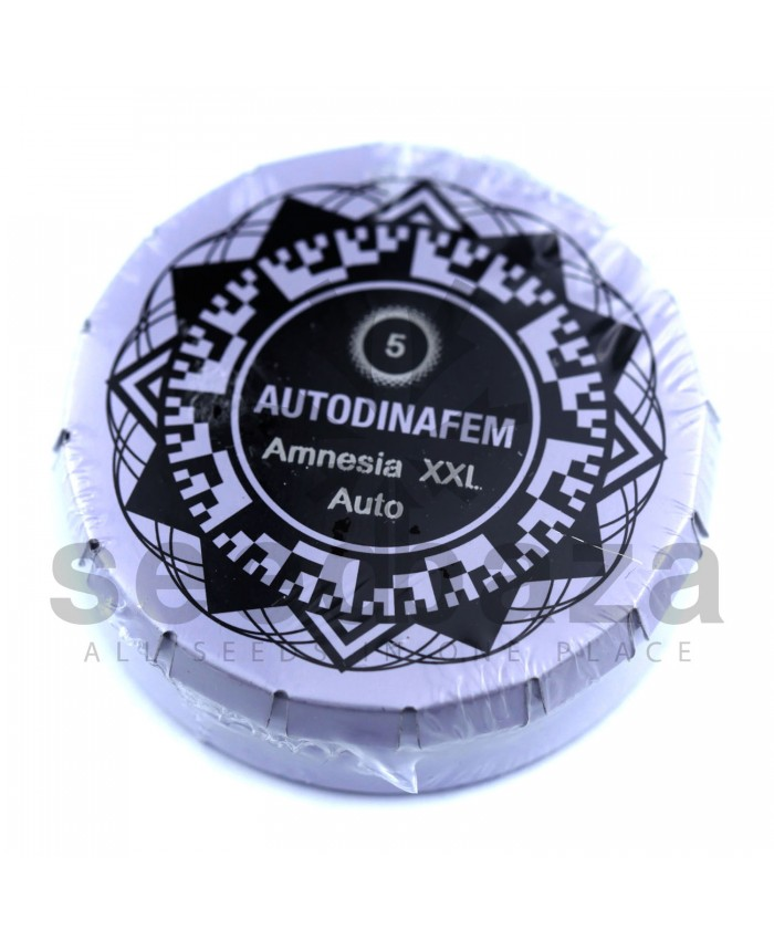Auto Amnesia XXL Feminised